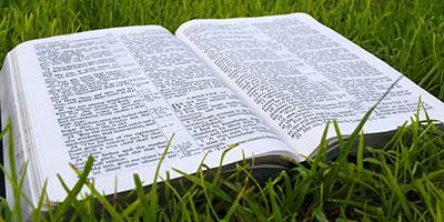 View Sermons